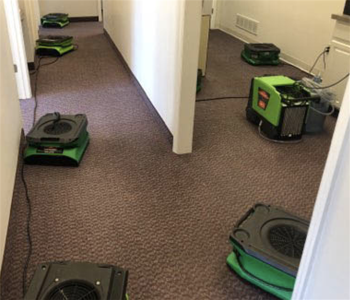 air movers at commercial cleanup
