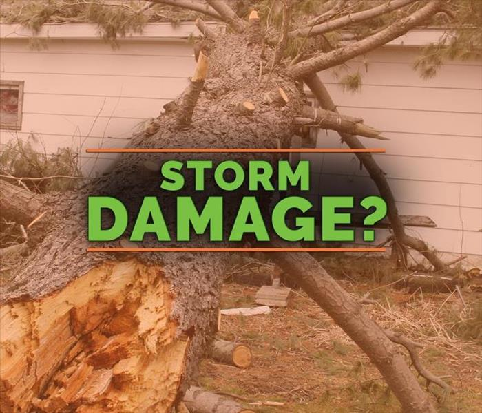 Storm Damage Summer Storm Tips: 3 Ways To Keep Your Business Safe