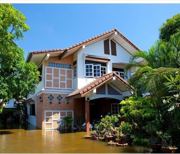 Water Damage Insurance Claims: How to Prepare for an Adjuster's Visit