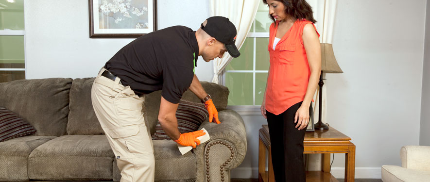 Cincinnati, OH carpet upholstery cleaning